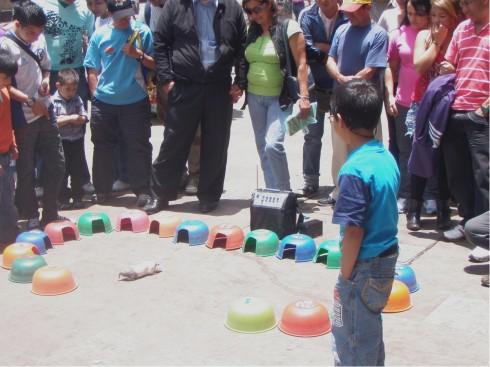 Los CUIS dan la suerte en las calles de Bogotá. No se pierda el ambiente de la Carrera 7 en domingo.
