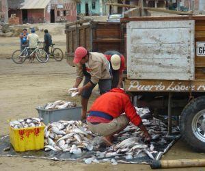 Puerto Lopez, puerto pesquero tradicional y lugar de partida para el buen avistamiento de ballenas