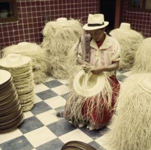 Una gran oferta artesanal. En la foto actividad de fabricación de los sombreros Panama, oiginales de Ecuador