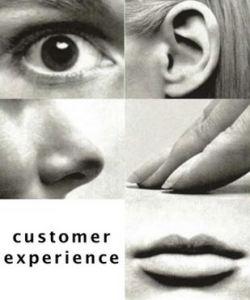 experiencia2